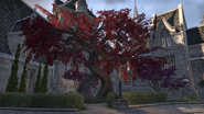 Shimmerene Red Tree