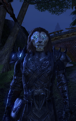 The Cat Master - ESO - Ra'zhir the Stormclaw (Old Appearance)