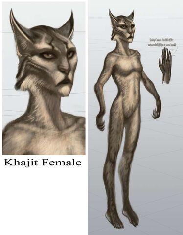 File:TESV Concept Khajiit Female.jpg