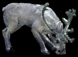 Белый Олень White Stag 001