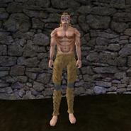 Простые штаны (Morrowind) 18 (муж)