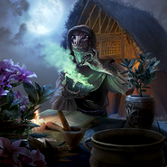Blackrose Herbalist card art