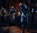 Dark Brotherhood (Online)