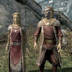 Dwóch altmerów