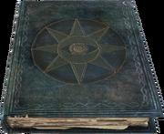 ShalidorsInsightsBook