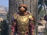 Abah's Landing Guard