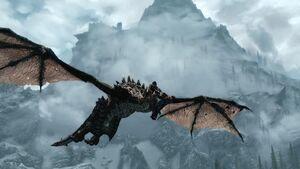 Dragonborn 28