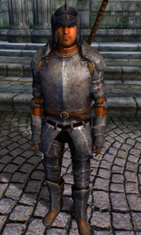 File:TESIV Character Arena Champion Test.png