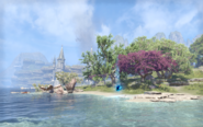 Time Breach - Near Sunhold Abyssal Geyser - Summerset