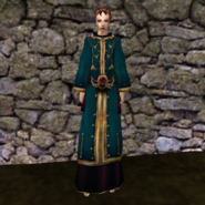 Вычурная Мантия 7 (Morrowind) жен