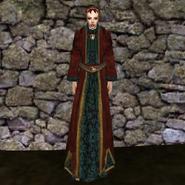 Дорогая мантия 4 (Morrowind) жен