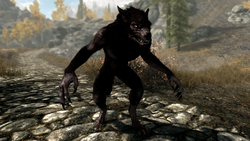Werewolf - Full Body Shot (Skyrim)