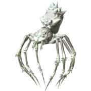 Araña de escarcha saltarina