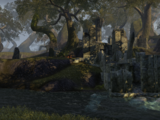 Black Vine Ruins (Location)