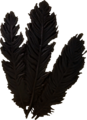 Hagraven feathers.png