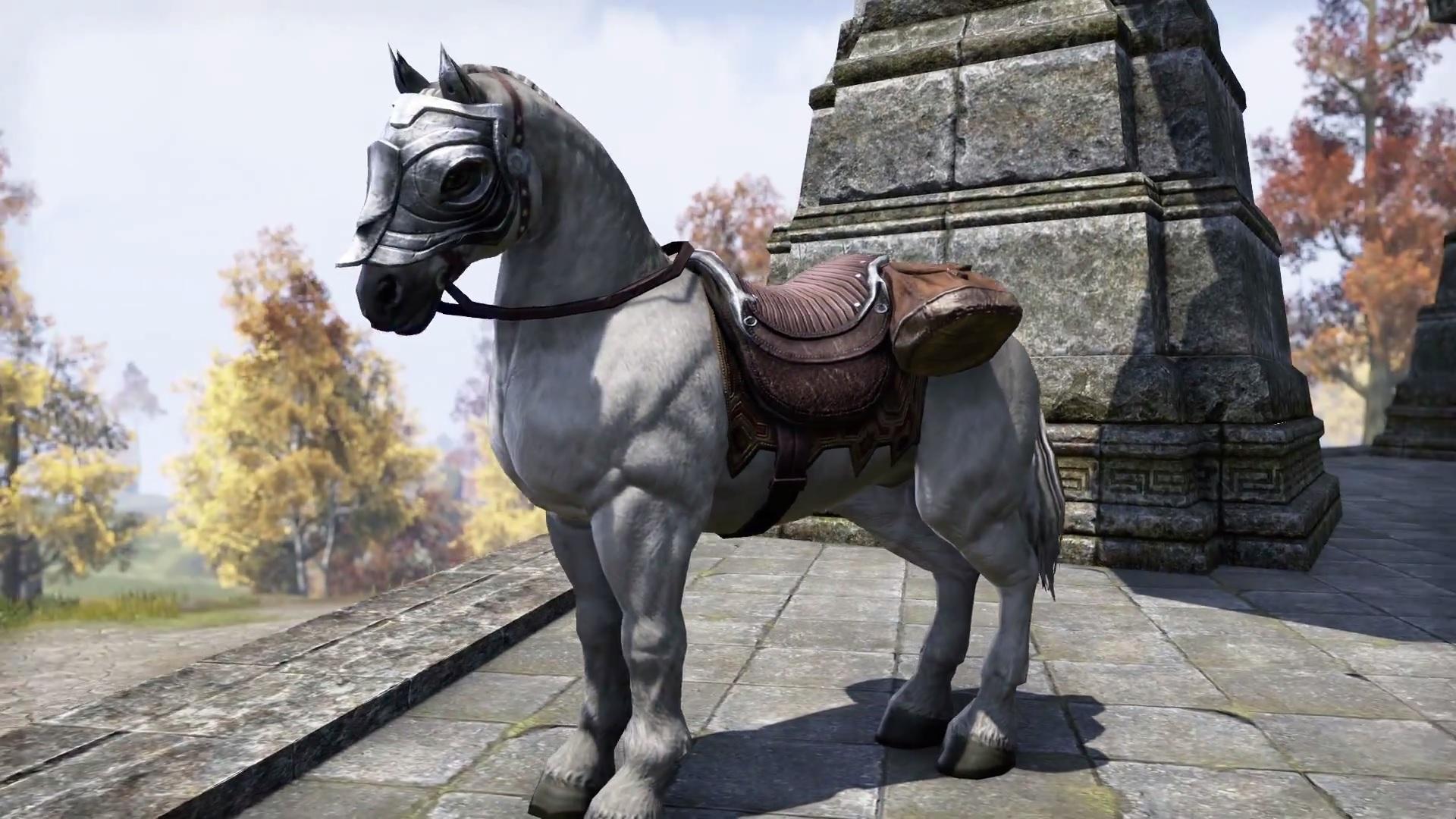 Horse (Online)   Elder Scrolls   FANDOM powered by Wikia