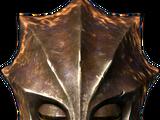 Armor (Dragonborn)