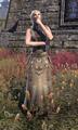 Amihild Last-Child.png