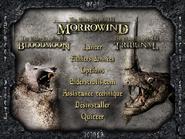 Lanceur du jeu (Morrowind)