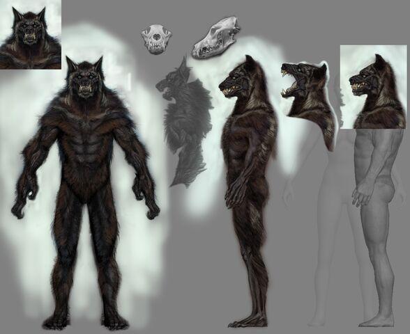 File:Werewolf Male.jpg