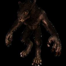Вервольф (Skyrim)