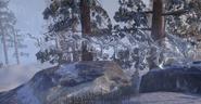 Ice Wraith (Online)