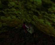 Redguard - The Goblin Caves - Fish Wheel Turn