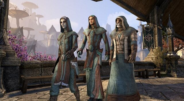 File:Mages Guild Costume Pack.jpg