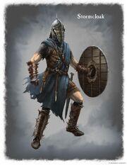 Stormcloack Armor