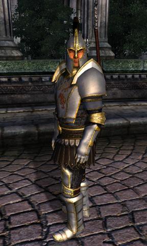 File:TESIV Guard Palace Guard.png
