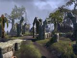 Fort-Tempête (Online)