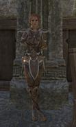 Yarmia Armor