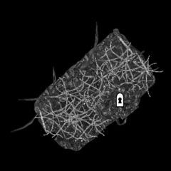 Ларгашбур Подвал Карта Largashbur Cellar Map 001