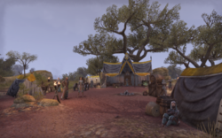 Falinesti Autumn Site Mages Guild Camp