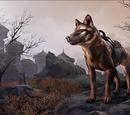 Gorne Striped Wolf