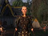 Lieutenant Urien