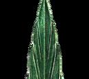 Szklany miecz (Skyrim)