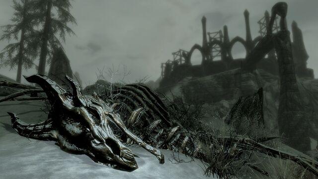 File:DragonSkeleton Dragonborn Screen.jpg