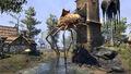 Morrowind silt strider.jpg