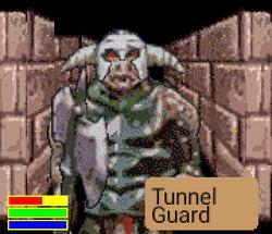 TunnelGuard