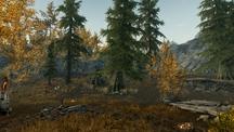 Осенняя поляна 3