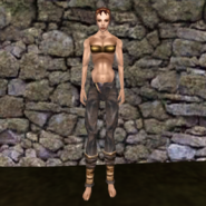 Простые штаны (Morrowind) 16 (жен)
