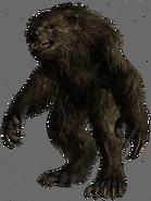 300px-Werebear