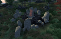 Aetherius Stone.png