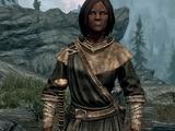 Vigilants of Stendarr (Character)