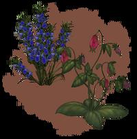 Бангкорайские цветы (концепт-арт)