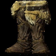 Сыромятные сапоги (Skyrim)