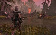 Dark Elf in Stonefalls