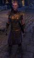 Lieutenant Mervial.png