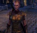 Lieutenant Mervial
